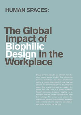 Rapport: Global Human Spaces