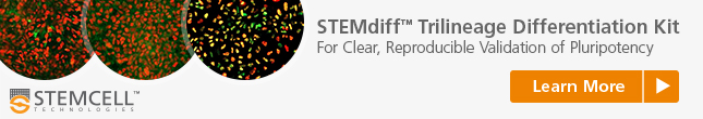 Directed Differentiation Kit for Clear, Reproducible Validation of Pluripotency: STEMdiff Trilineage Kit