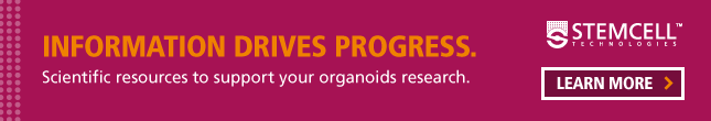 Scientific resources to support your organoids research. Learn More!