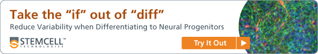 "Take the ""if"" out of ""diff"": Reduce variability when differentiating to neural progenitors"