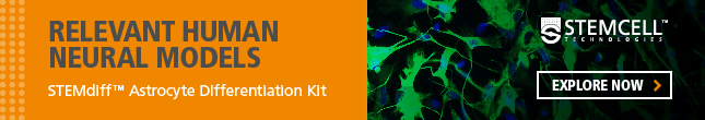 Create Relevant Human Neural Models with STEMDiff Astrocyte Differentiation Kit. Explore now!