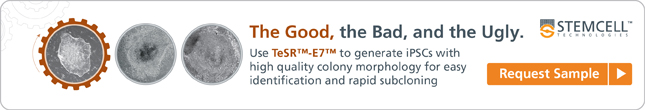 Use TeSR-E7 to generate iPS cells with high quality colony morphology for easy identification and rapid subcloning. Request your sample