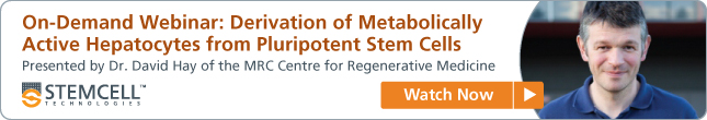 Derivation of Metabolically Active Hepatocytes from Pluripotent Stem Cells - View On-Demand Webinar Now