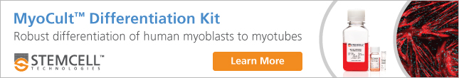 Use MyoCult™ Differentiation Kit to Generate Myotubes from Human Skeletal Muscle Progenitor Cells (Myoblasts). Learn More.