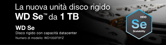 Introducing the WD Se™ 1 TB Hard Drive.  WD Se Datacenter Capacity HDD  Model Number: WD1002F9YZ.