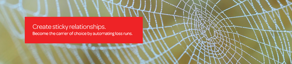 Create sticky relationships. Become the carrier of choice by automating loss runs.