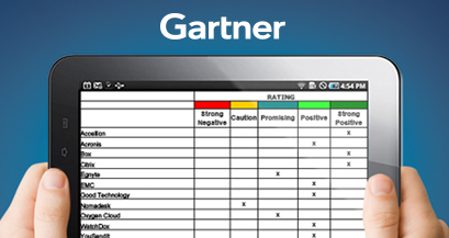 Gartner MarketScope 2013