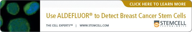 Use Aldefluor to Detect Breast Cancer Stem Cells - Click here to learn more - 645x110