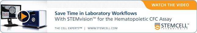 STEMvision_645x110_v01c