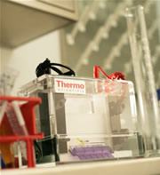 Thermo Scientific Owl Warranty