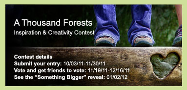 A Thousand Forests Contest