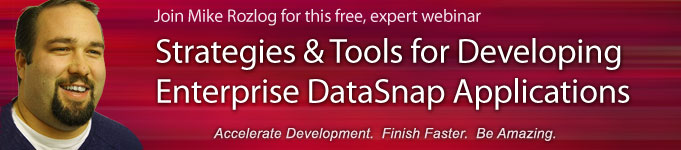 Strategies & Tools for Developing Enterprise DataSnap Applications