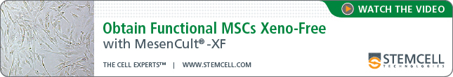 Watch the Video: Obtain Functional MSCs Xeno-Free with MesenCult-XF