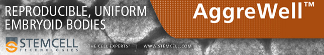 Use AggreWell™ for Reproducible, Uniform Embryoid Bodies