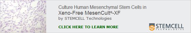 MesenCultXenoFree_v1