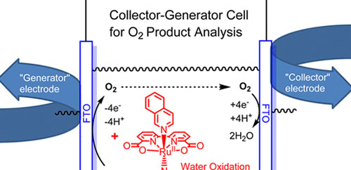Analysis of Homogeneous Water Oxidation Catalysis with Collector–Generator Cells