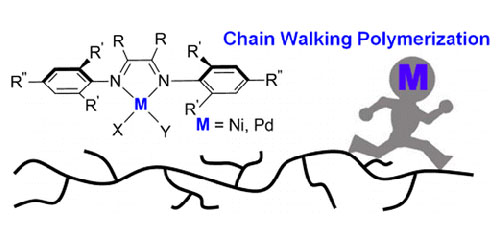 Palladium and Nickel Catalyzed Chain Walking Olefin Polymerization and Copolymerization