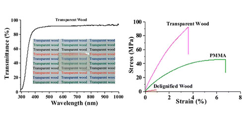 Optically Transparent Wood from a Nanoporous Cellulosic Template: Combining Functional and Structural Performance