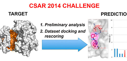 Blind Pose Prediction, Scoring, and Affinity Ranking of the CSAR 2014 Dataset