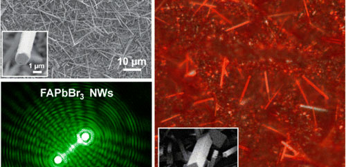 Nanowire Lasers of Formamidinium Lead Halide Perovskites and Their Stabilized Alloys with Improved Stability