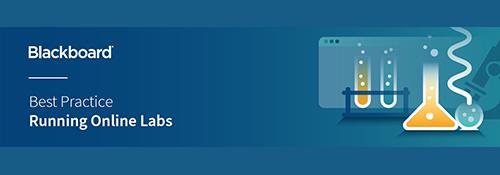 Datasheet: Running Online Labs