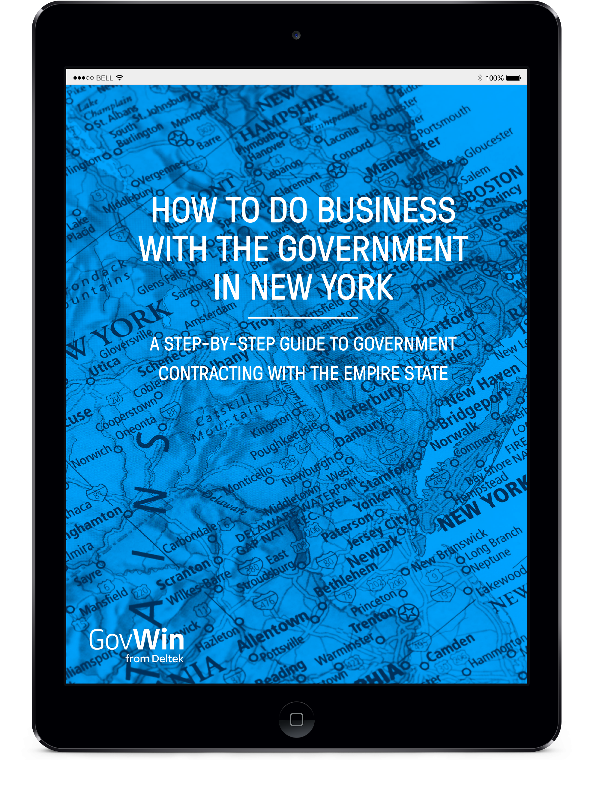 How to do Business with the Government in New York