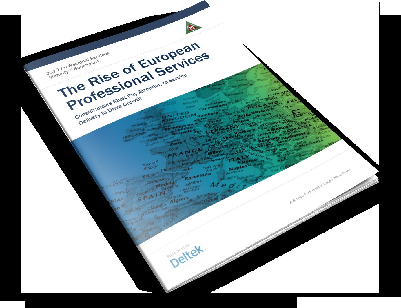 SPI Report - EMEA-Consulting