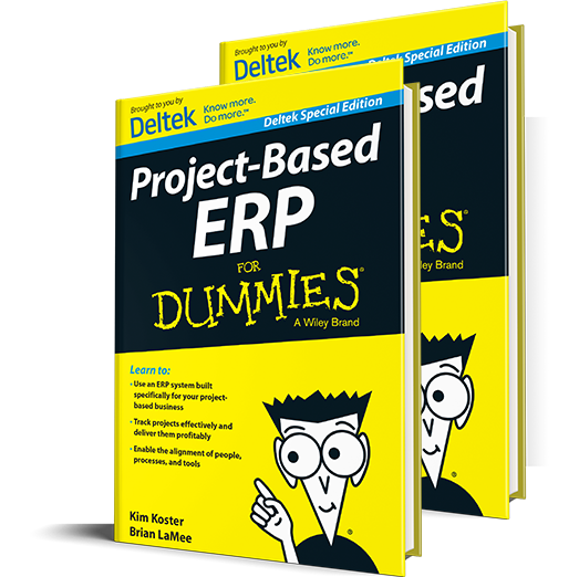 Project-Based Enterprise Resource Planning For Dummies