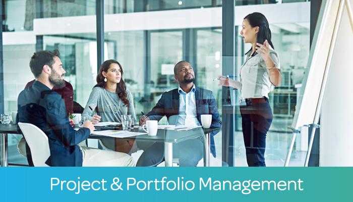 Project & Portfolio Management