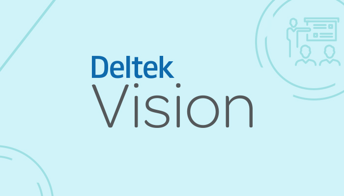 Deltek Vision