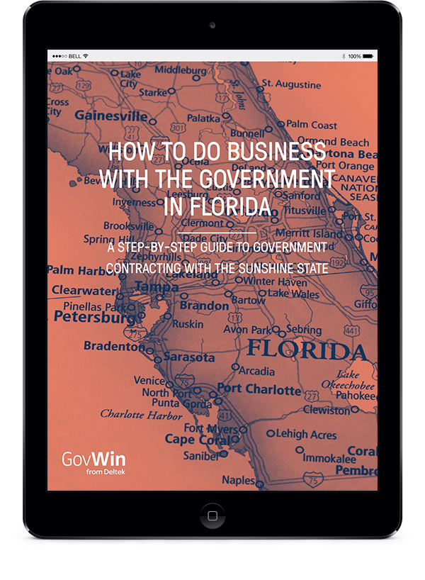 How to do Business with the Government in Florida