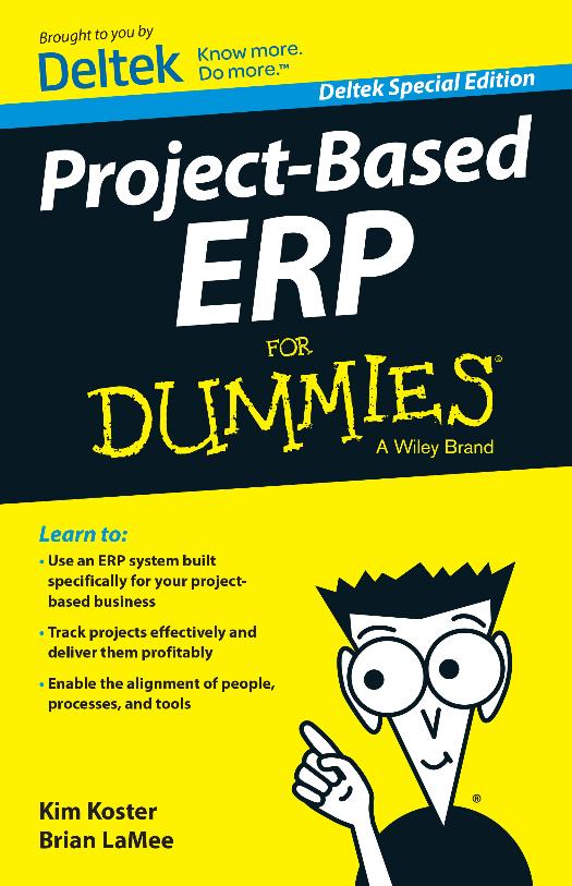 Projektbasiertes ERP für Dummies