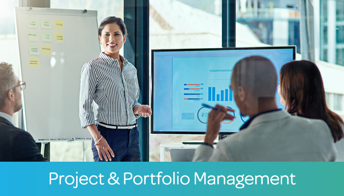 Project & Portfolio Management