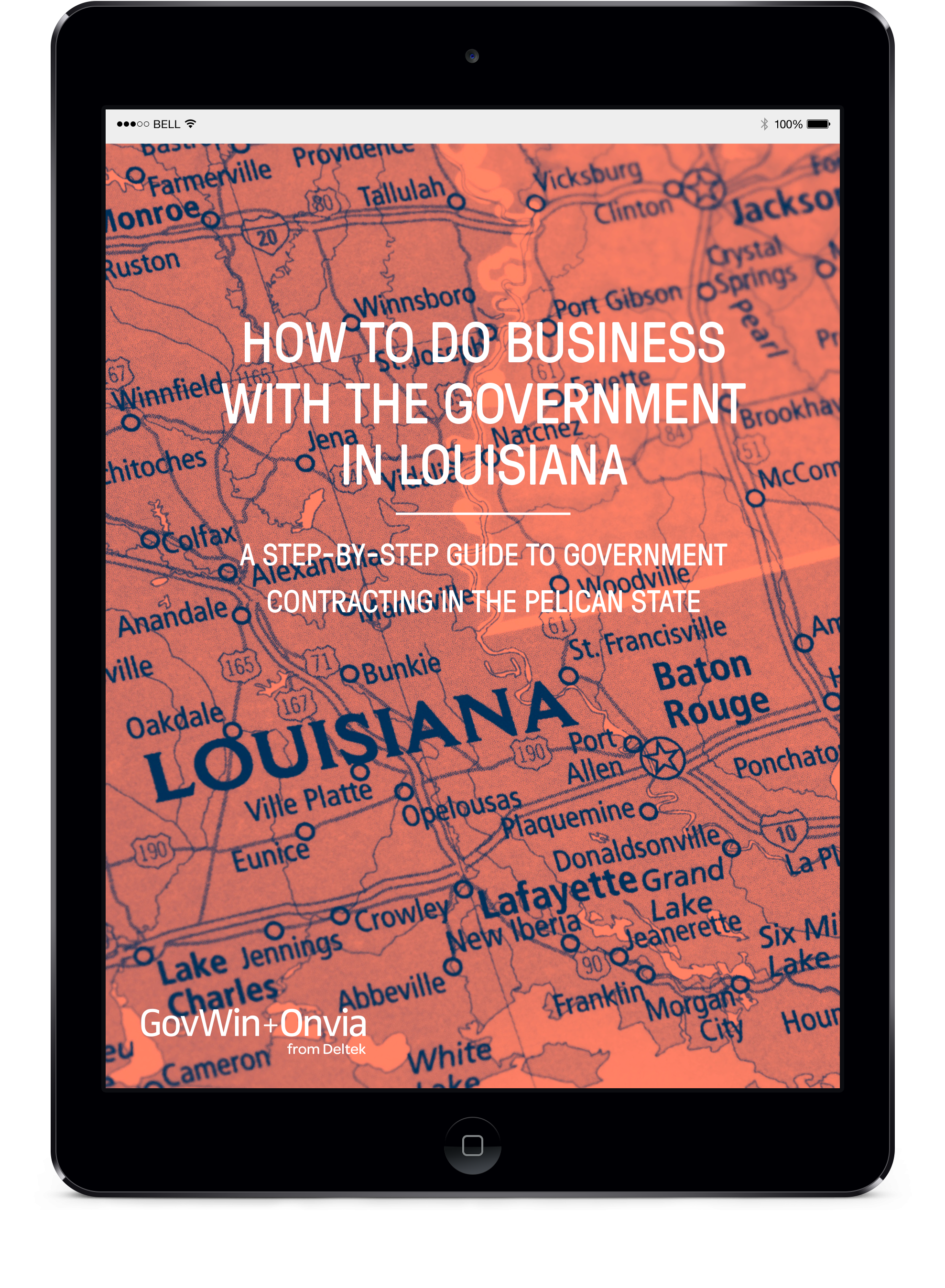 How to do Business with the Government in Louisiana