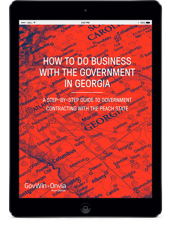 How to do Business with the Government in Georgia