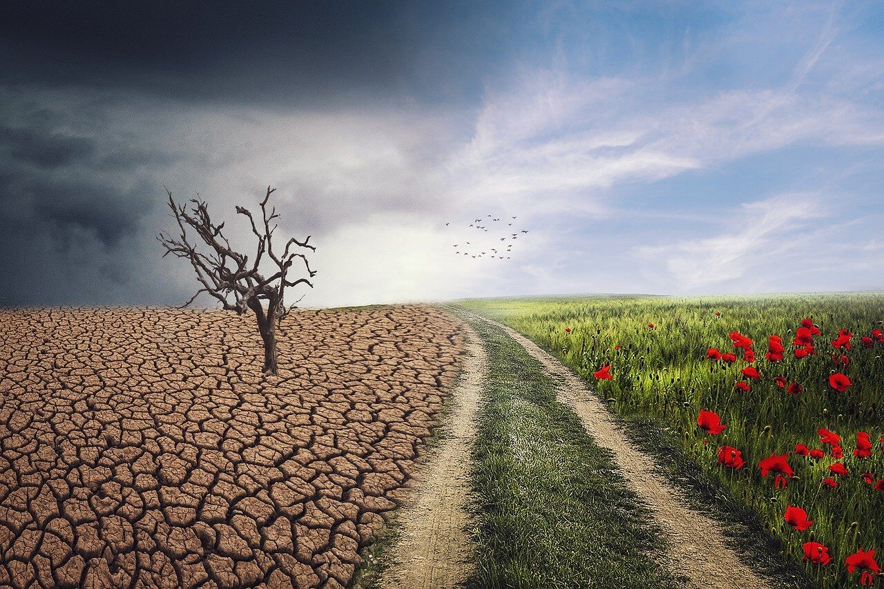 The Science of Embedding Resilience in Marketing and Sales Plans