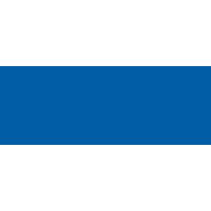 A10 Network Logo