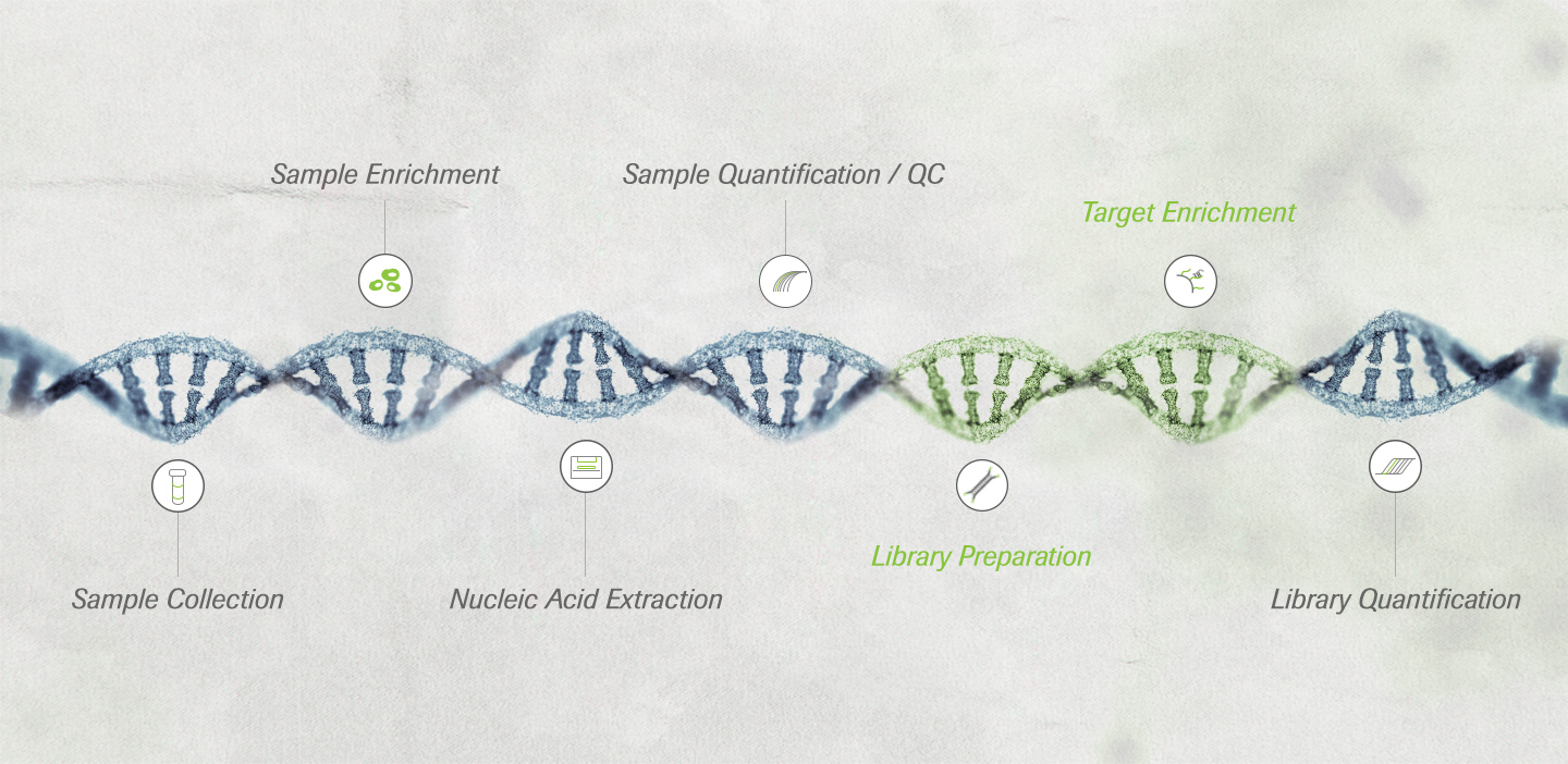 A timeline of Roche's proven innovation in sequencing
