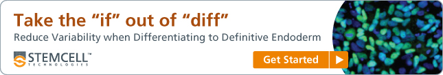 Take the &quote;if&quote; out of &quote;diff&quote;: reduce variability when differentiating to definitive endoderm