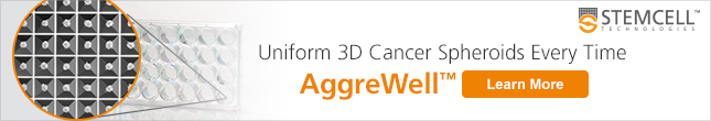 Generate Uniform 3D Cancer Spheroids with AggreWell™