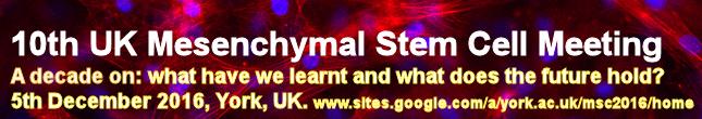 Register for the 10th Mesenchymal Stem Cell Meeting