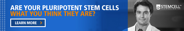 Are Your Pluripotent Stem Cells What You Think They Are?