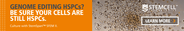 Be sure the cells you're gene editing are still HSPCs with StemSpan™ SFEM II culture medium.