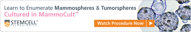 Learn to Enumerate Mammospheres & Tumorspheres Cultured in MammoCult: Watch Procedure Now