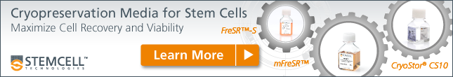 Cryopreservation Media for Stem Cells - Learn More!