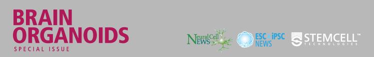 Neural Cell News