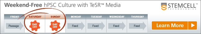 Weekend-Free Culture hPSCs with mTeSR™1 or TeSR™-E8™