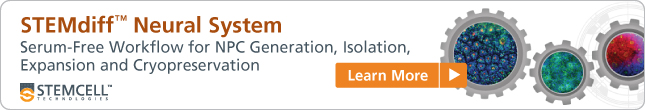 STEMdiff™ Neural System: Serum-Free Workflow for NPC Generation, Isolation, Expansion and Cryopreservation. Learn More!
