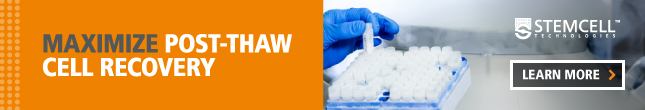 Maximize Post-Thaw Cell Recovery with cGMP-Manufactured Cryopreservation Media. Learn More.
