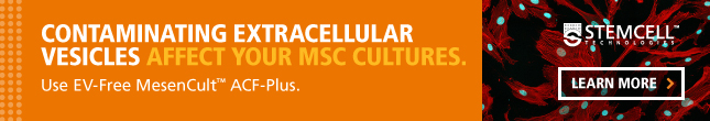 Culture mesenchymal stem cells, exosome-free